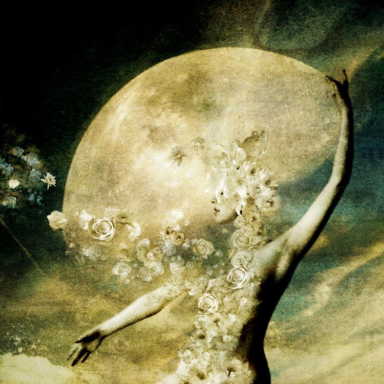 moon_dancer_05_by_moonywolf.jpg