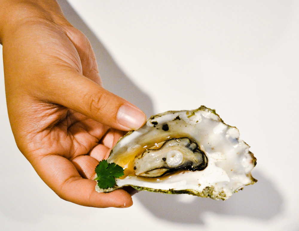 Oysters-5.jpg