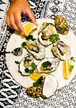 Oysters-2.jpg
