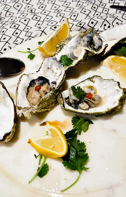 Oysters-9.jpg