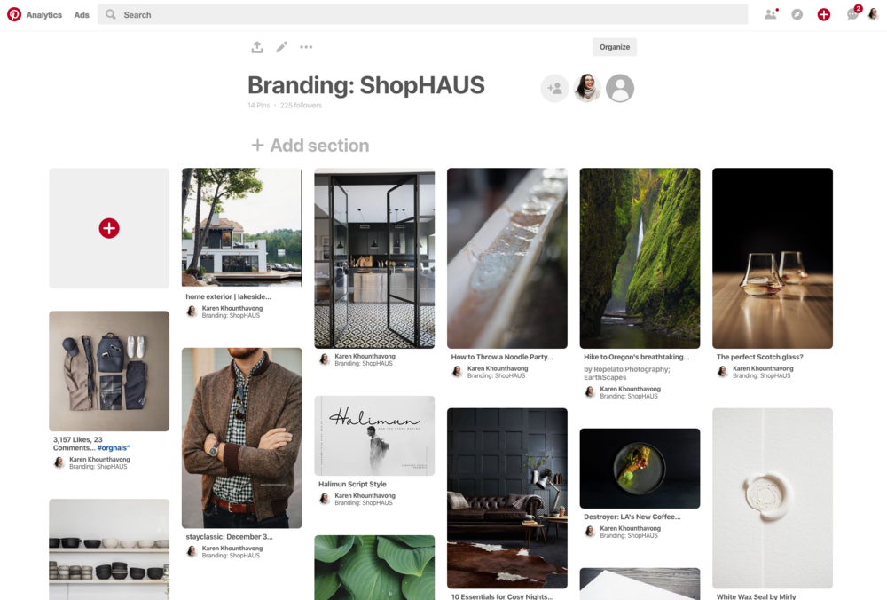 Pinterest ShopHAUS.png