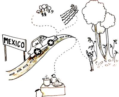 mexico.trips.jpg