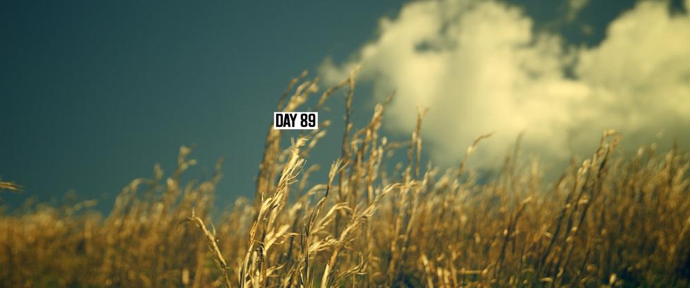TLR_VFX_DAYS_6.jpg