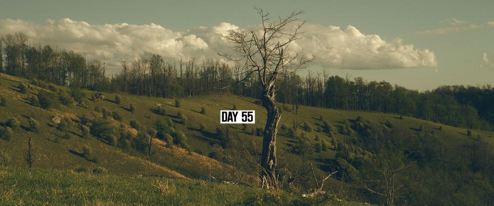 TLR_VFX_DAYS_5.jpg