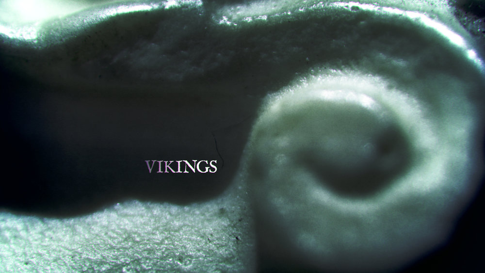08_VIKINGS CARD_1.jpg