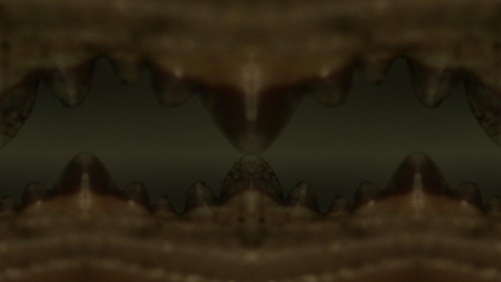Macro_Crab_Legs_Stills_13.jpg