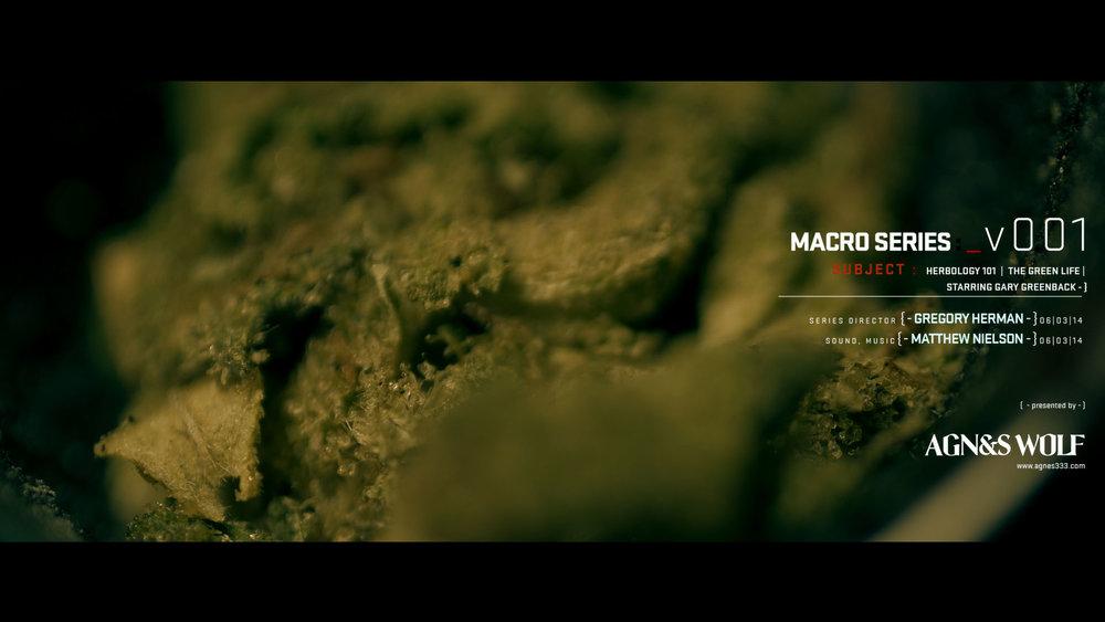 00_macro_series_v1_0.jpg