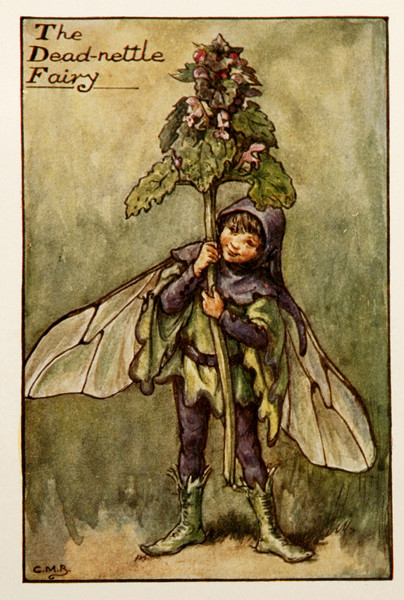 "Cicely Mary Barker, ""Dead Nettle Fairy"", 1920s"
