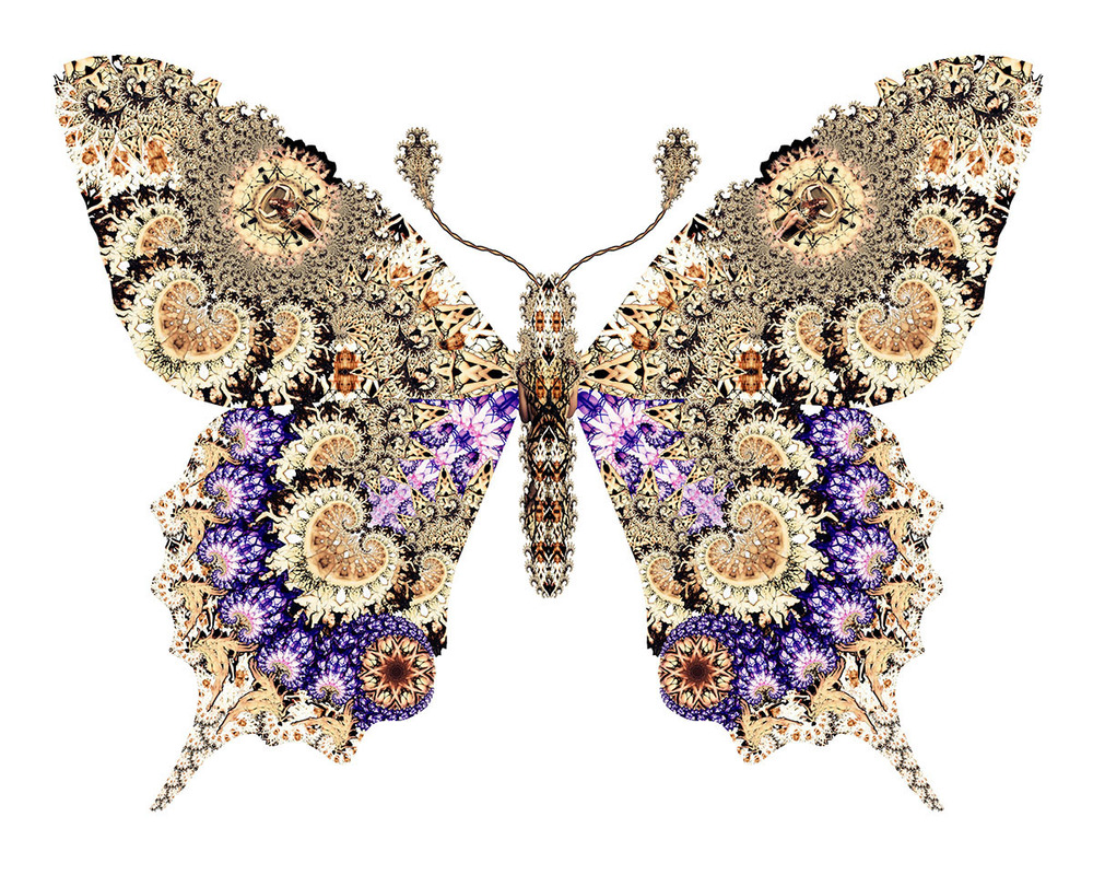 02 Madame Butterfly 1200px.jpg