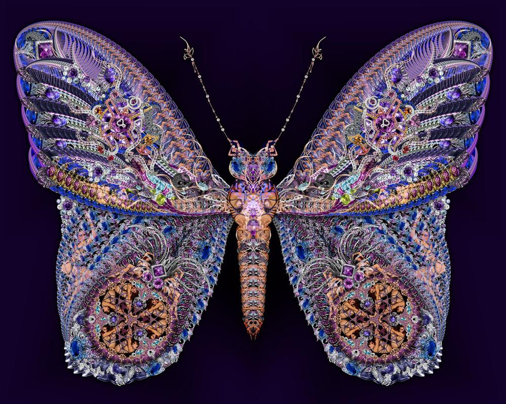 02 Purple Butterfly 1200px.jpg