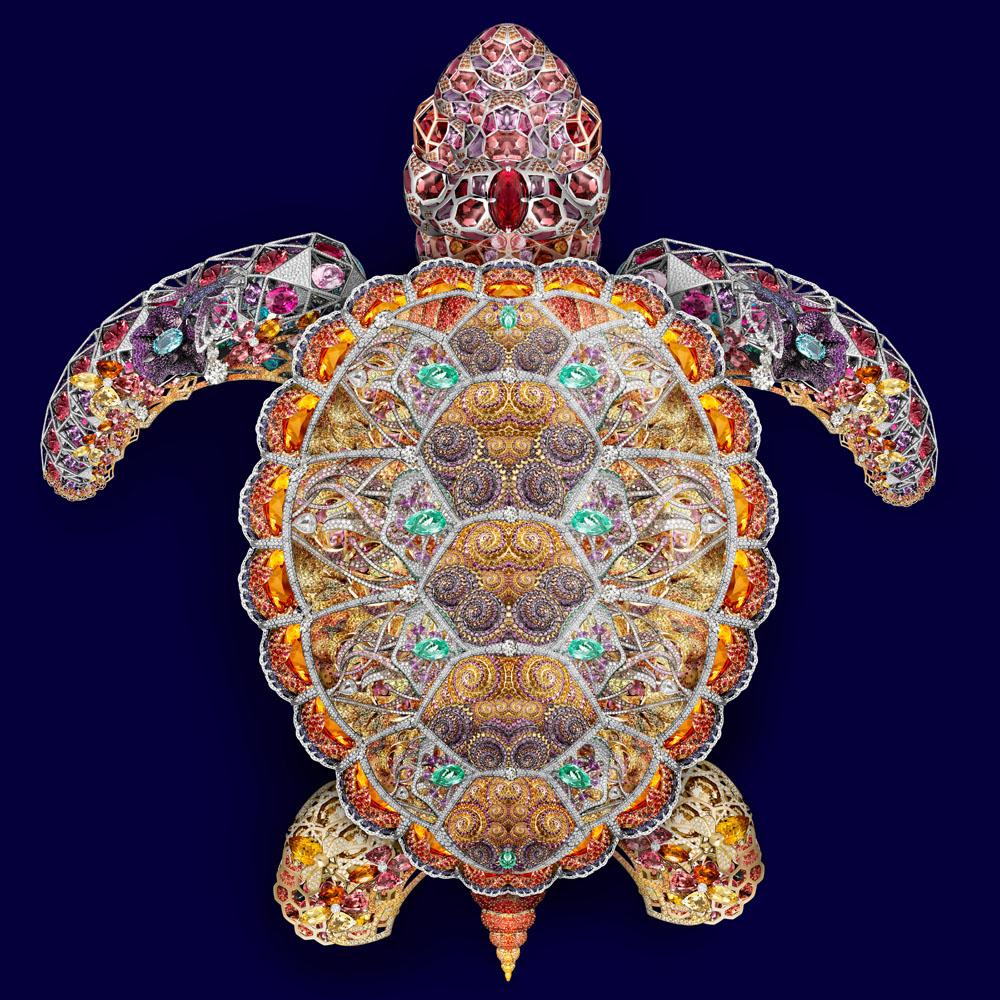 04 Sea Turtle 1000px.jpg