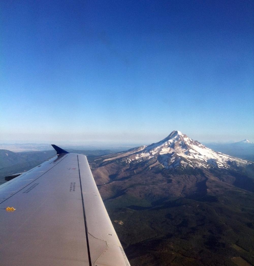thepaperairplane_fly.jpg