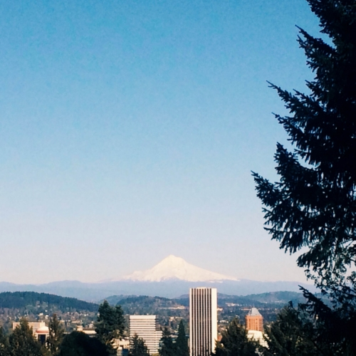 "In Portland slang, ""the mountain is out today."""
