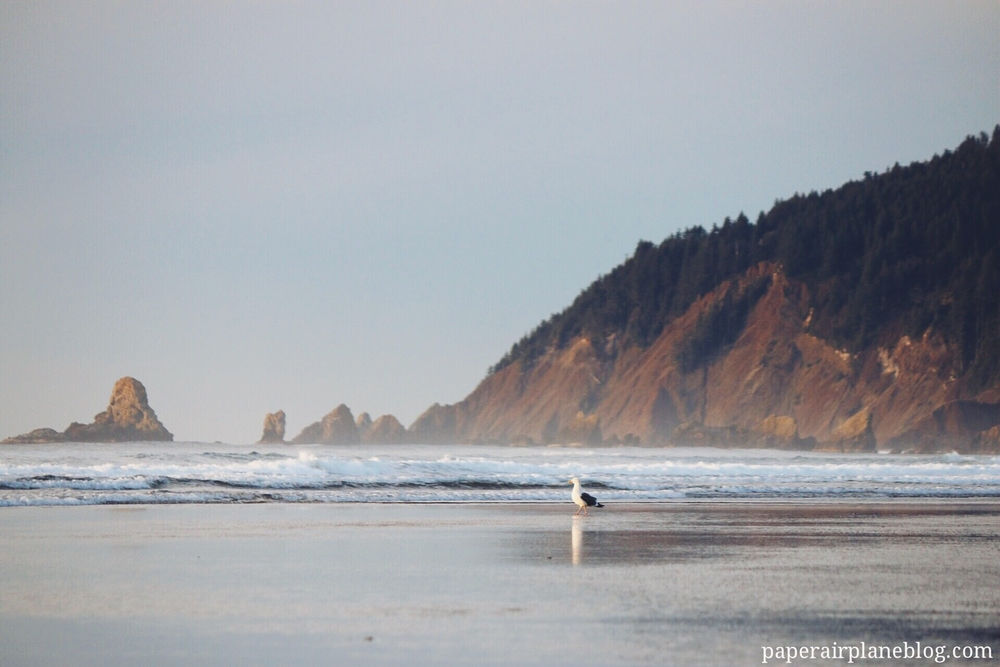 cannonbeach_thepaperairplane.jpg