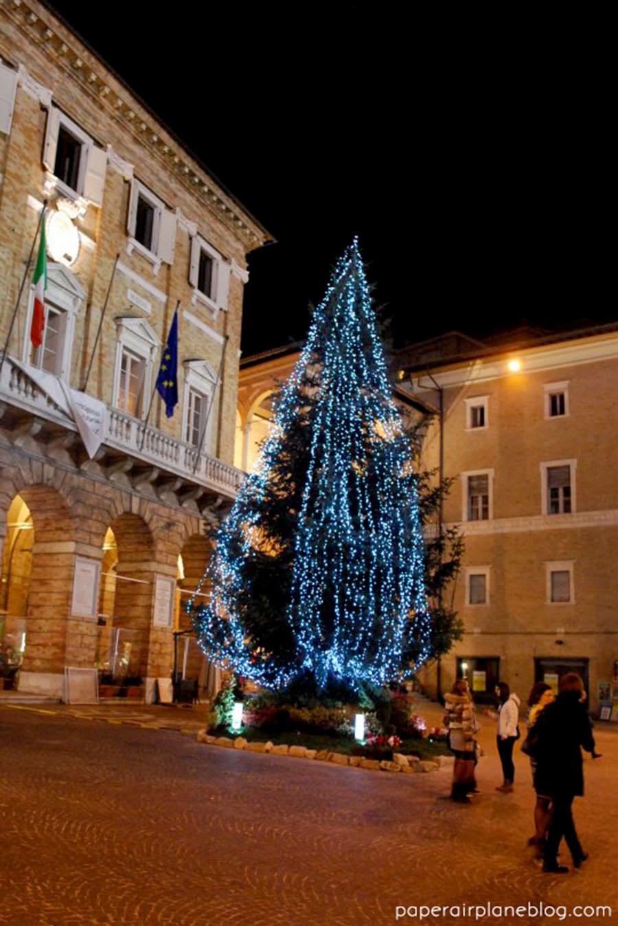 The Christmas tree in Piazza della Libertà. (2011)