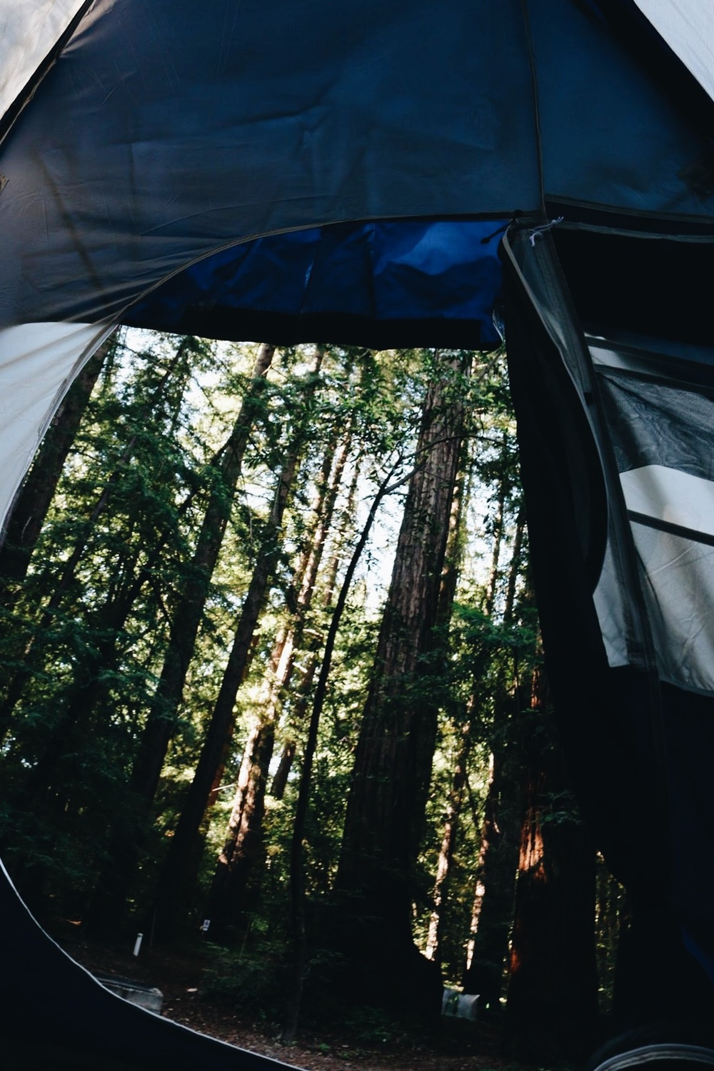 Tent views in Pfieffer Big Sur State Park.