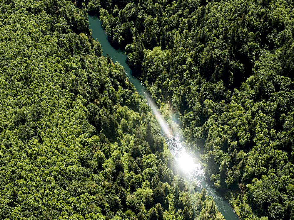 The Cowlitz River shines in the sun below the Mossyrock Dam on Thursday, May 28, 2015.