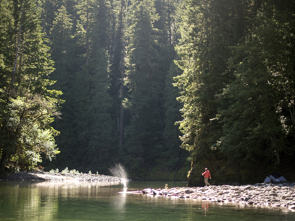 A camper skips a stone into the Ohanapechosh River while hanging out on the morning of Friday, June 5, 2015 off of Forest Road 1270 east of Packwood.
