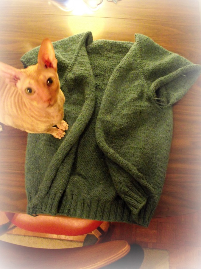 cbnewsweater7.jpg