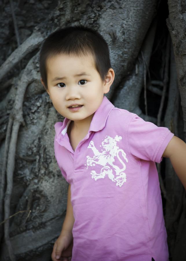 Asian family portraits