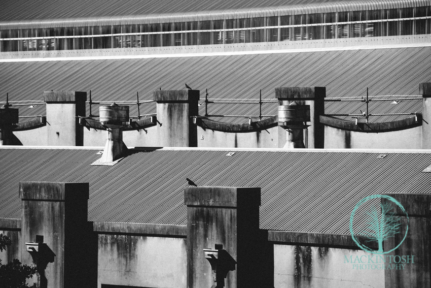 Architectural photographs