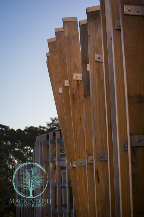 Timber Building photographs