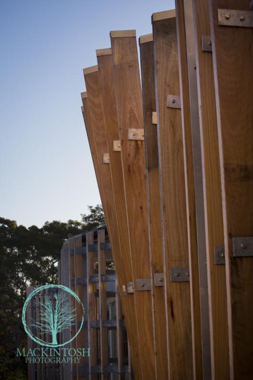 Timber Building photographs