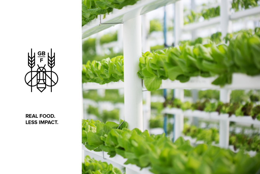 Green Bee Farm > Micro hydroponic farm.  > Scope: Logo, visual identity, print, digital.