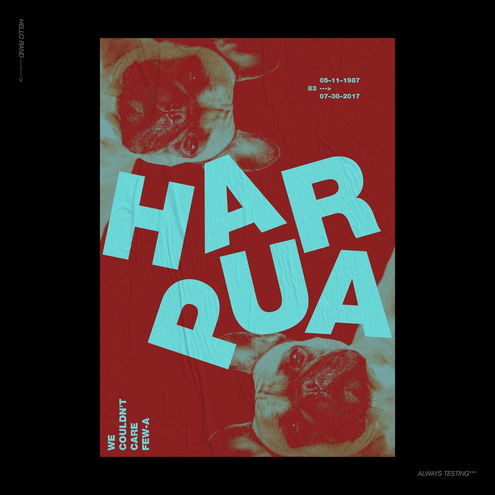 Play_Harpua_C1.jpg