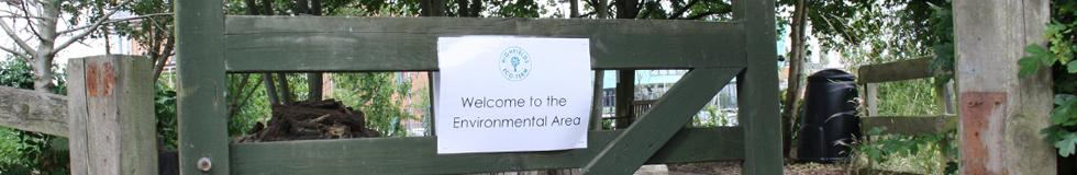 EnvironmentalArea[1].jpg