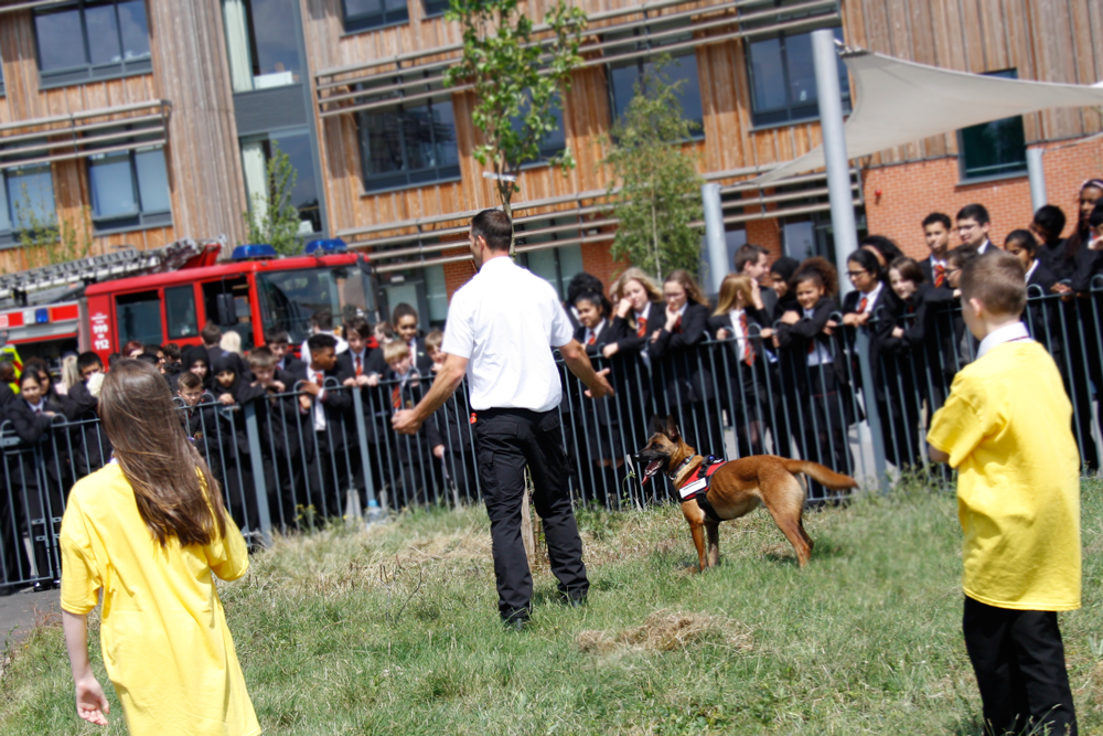 Fire Service - Guide Dog Training
