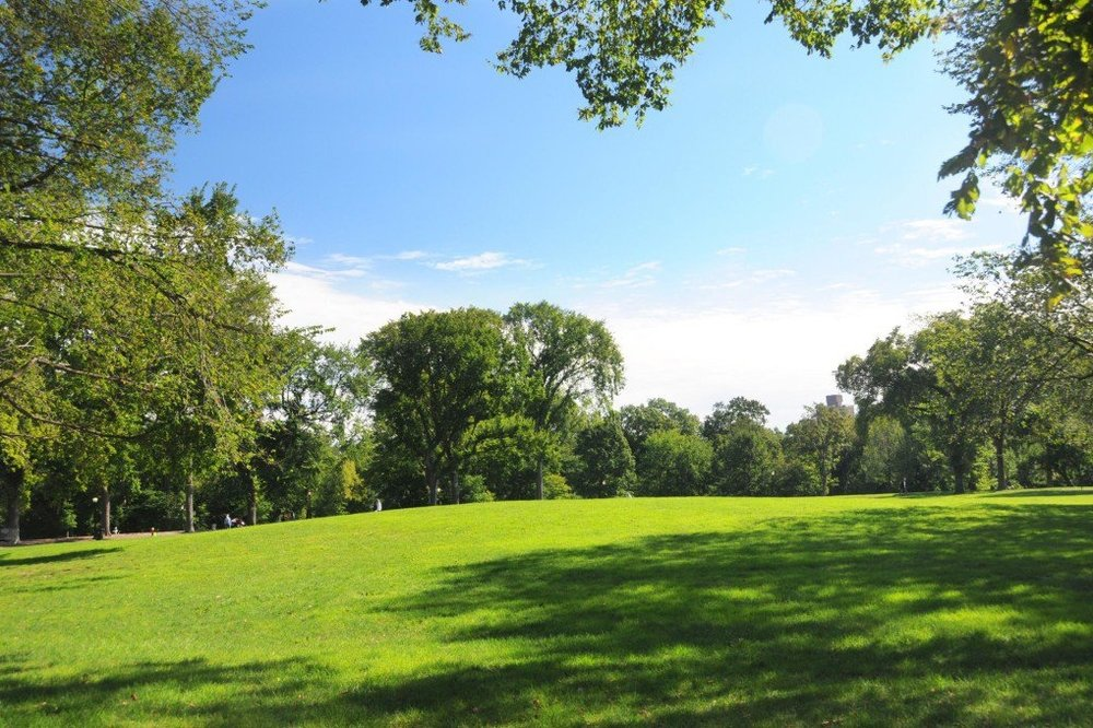 Central-Park-Great-Hill-today-1024x679.jpg
