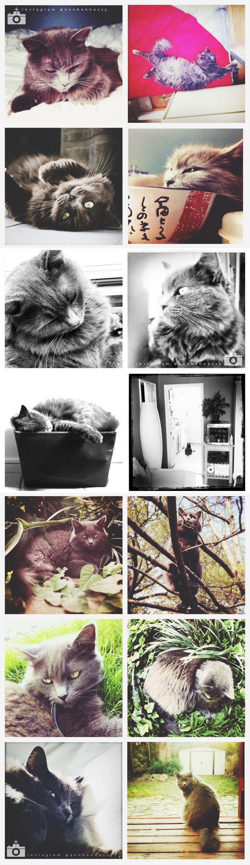 Macy_post3.jpg