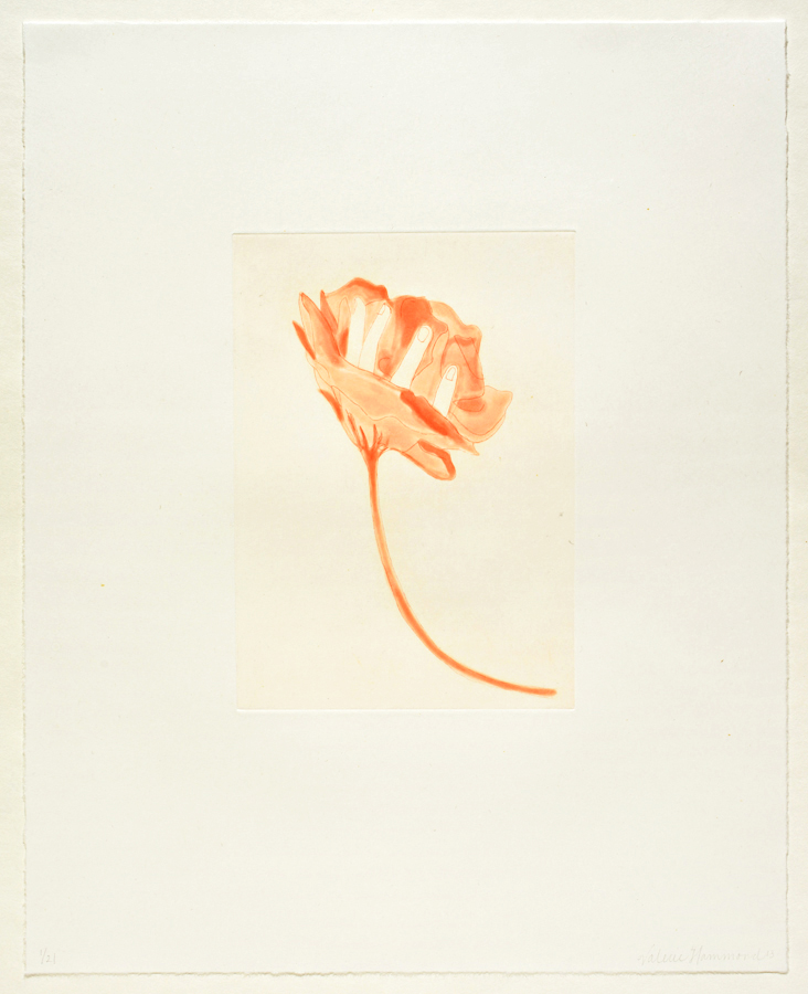 "Valerie Hammond Flower, 2013 Spit bite etching 18"" x 14.5"" paper, 9"" x 6.5"" print Retail Value: $650 Opening Bid: $200"