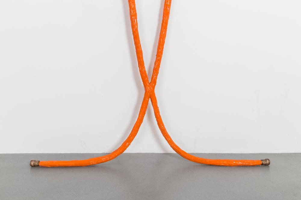 Tamara Johnson:  No Your Boundaries  Curator-Mentor: Renaud Proch