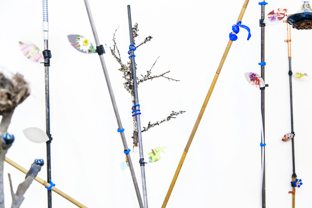 Carson Fisk-Vittori, detail from Weather pollination techniques: out of human visible range (2016); 78 x 36 x 36 inches; UV prints on aluminum, aluminum poles, bamboo, hand-formed plastic, lichen covered branch, lotus seed pod, digital camera, flexible tripod, negative ion showerhead, metal and plastic hardware and fixtures, velcro, water. Courtesy the artist.