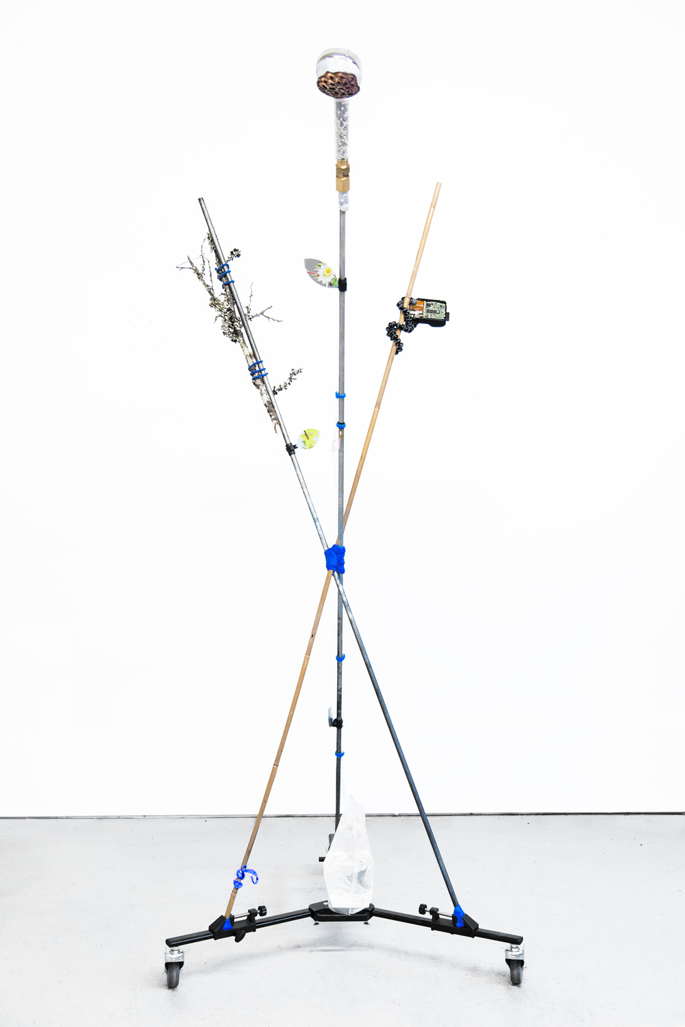 Carson Fisk-Vittori    Weather pollination techniques: out of human visible range , 2016  UV prints on aluminum, aluminum poles, bamboo, hand-formed plastic, lichen covered branch, lotus seed pod, digital camera, flexible tripod, negative ion showerhead, metal and plastic hardware and fixtures, velcro, water, 78 x 36 x 36 inches
