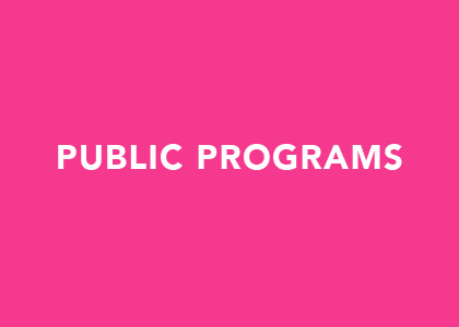 Curate a series of talks and events through the Public Programming Fellowship.