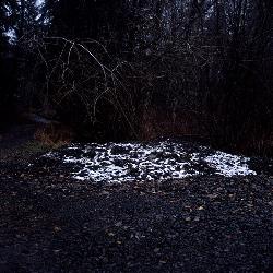 bones.snow.pile.jpg
