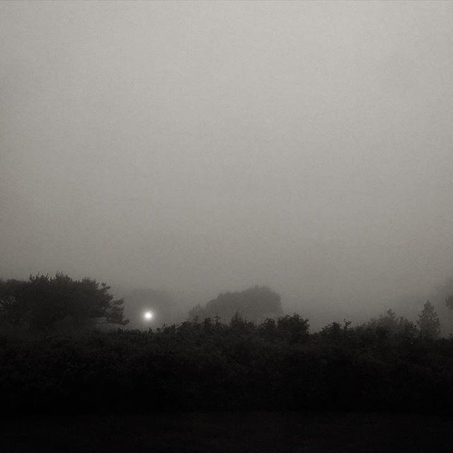 Lamplight, fog. Evening at the coast.