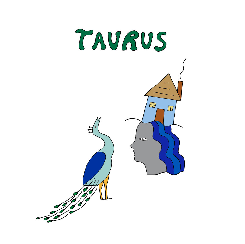 taurus drawing.jpg