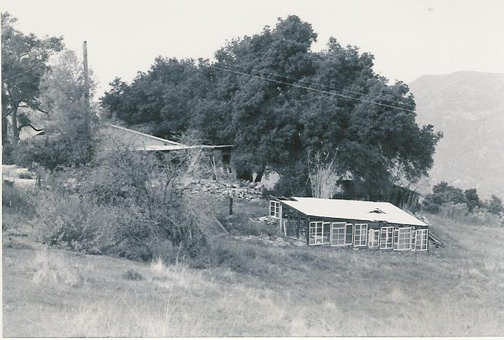 A DISTANT VIEW of the farmhouse and workshop with the greenhouse in the foreground. (Archive photo, possibly 1950s.)