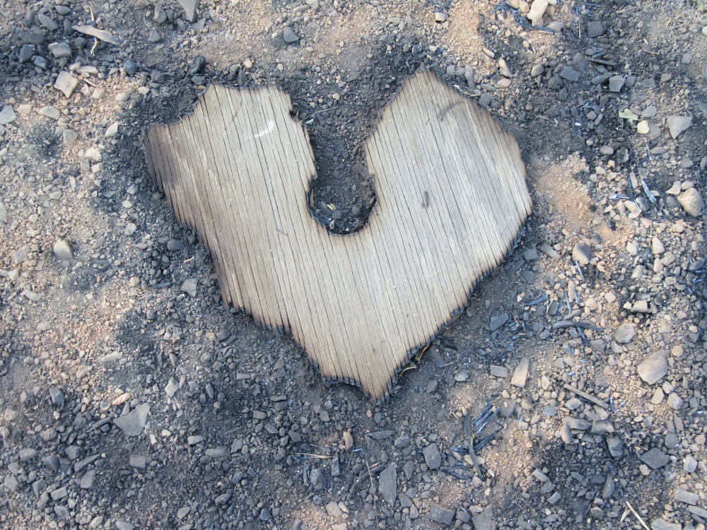 BURNED WOOD in the shape of a heart found after the 2017 Thomas Fire near debris from the 1985 New Life Fire. (Photo: Sam Ervin, December 21, 2017)