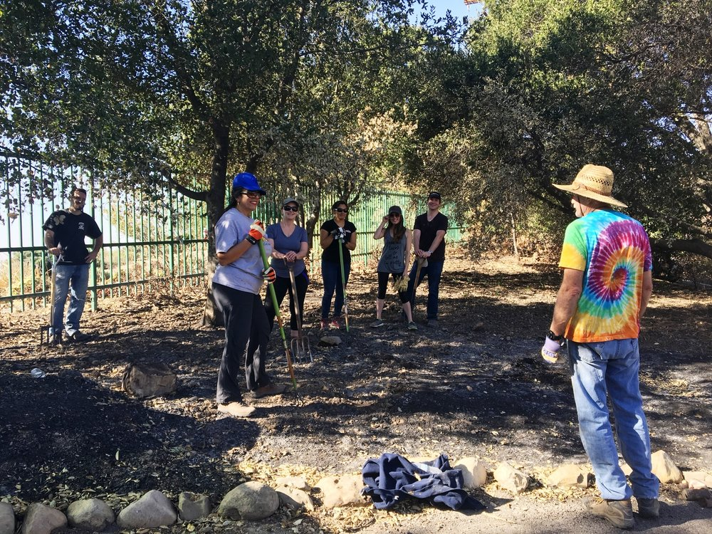 JIM WHEDON (right) giving instructions regarding tilling the hardened, ash-crusted soil under a Coast Life Oak at the entryway to Meher Mount. (Left to right): Ian Dibble, Yolanda Koumidou, Nancy Rugo, Michelle Choug, Annabelle Orme and Tim DeGraff. (Photo: Cassandra Bramucci, January 28, 2018)