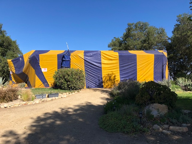TENTING the Visitor Center/Caretaker Quarters at Meher Mount for termite fumigation. (Photo: Cassandra Bramucci, June 2018)