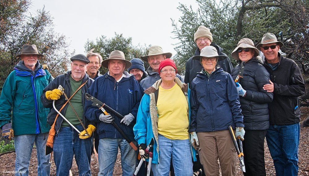 THE GREAT  DHUNI  STICK HARVEST volunteers at Meher Mount on January 12, 2019. (Left to right) Jim Whedon, David Trombley, Kyle Morrisson, Jim Whitson, David Springhorn, Sam Ervin, Cassandra Bramucci, Fred Stankus, Kristina Somma, Agnes Montano, and Juan Mendez. Margaret Magnus is taking the photo, and Robert Turnage is at the Visitor Center greeting guests. Lisa Morrison, Kristen Tarpey, and Mike Tarpey came later in the afternoon.