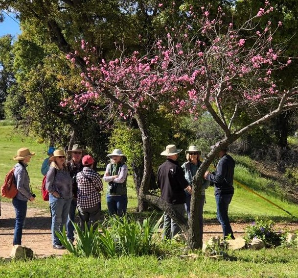 THE FIRST GROUP of bird watchers gathers by the pond ready to walk to Baba's Tree at Meher Mount for a morning of bird watching. (Photo: Cassandra Bramucci, April 6, 2019)