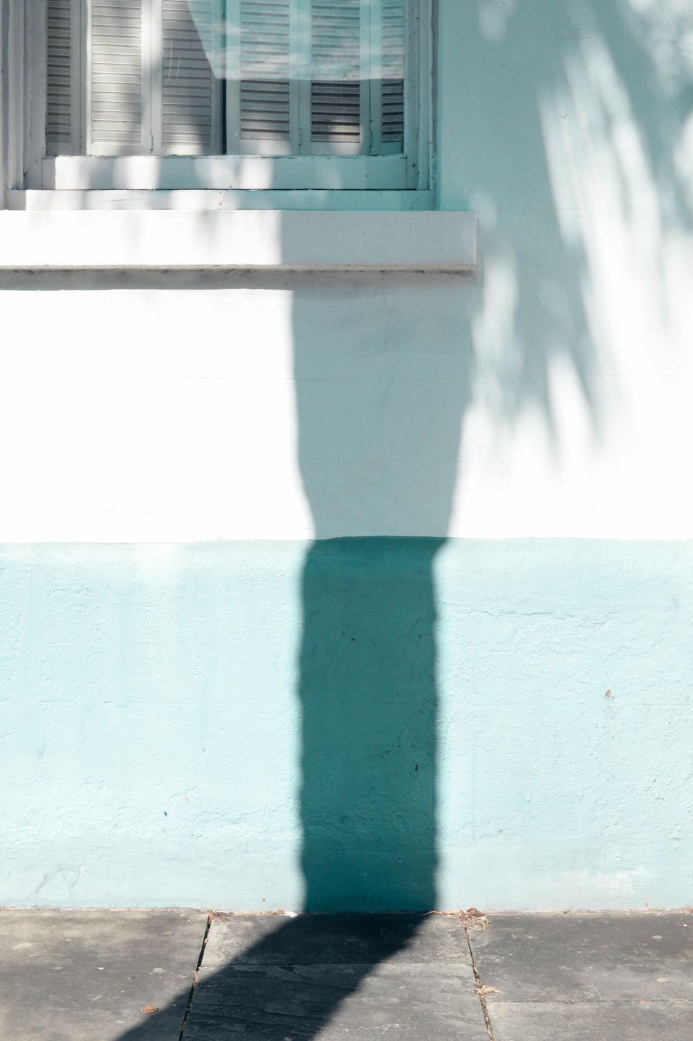 Charleston shadows. February, 2015.