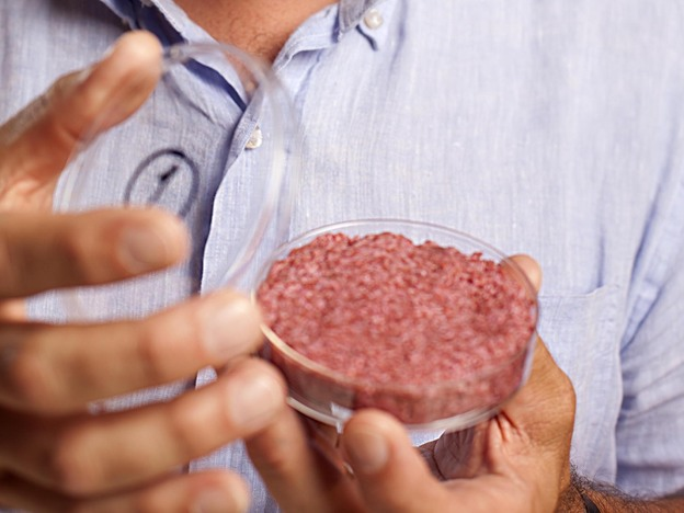 cultured-beef-03-7235289a98d8b857165d8d831abbc00113b30357-s4.jpg