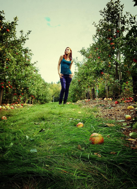 september_apples.JPG